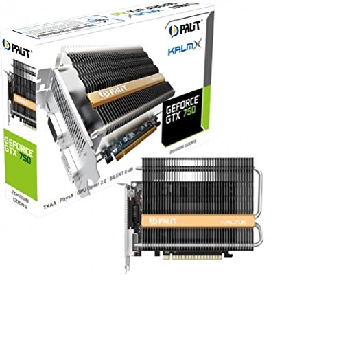 Palit NVIDIA GTX750 NE5X75000941H passiv gekühlt Grafikkarte (PCI-e, 2GB GDDR5-Speicher, 2X DVI, Mini-HDMI, 1 GPU)