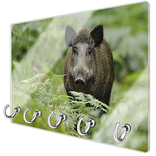 banjado Schlüsselbrett aus Glas | Schlüsselboard 30cm x 20cm | beschreibbar und magnetisch | Schlüsselleiste mit 5 Haken | Motiv Wildschwein