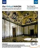 The Virtual Haydn - Sämtliche We...