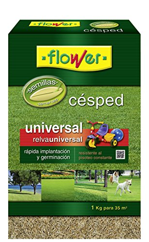 Flower 10789 10789-Semilla césped Universal, 1 kg, No Aplica, 16x16x1