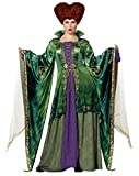 Adult Winifred Sanderson Deluxe Hocus Pocus Costume | OFFICIALLY LICENSED - M