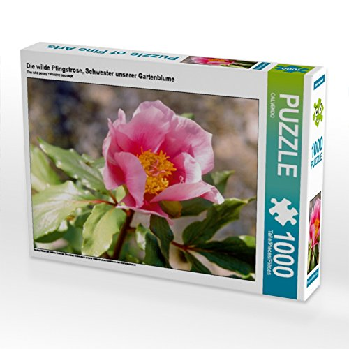 CALVENDO Puzzle The Wild Peony, Sister of Our Garden Flower 1000 Pieces 64 x 48 cm from Verlag