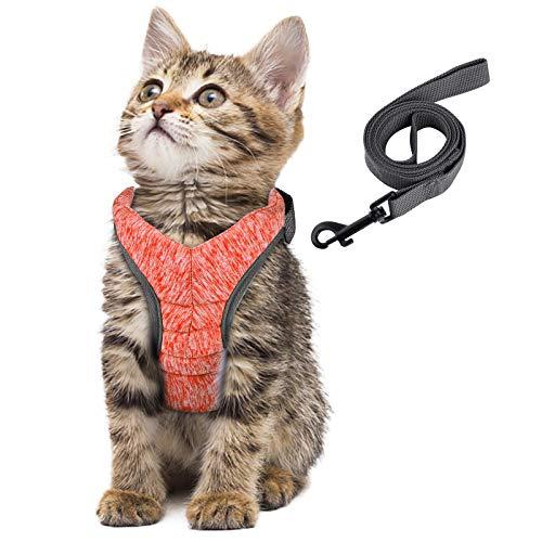 Simpeak Rabbitgoo Pettorina per Gatti con Guinzaglio, Ultra Leggero Gatti Imbracature Pettorina per Cani Piccola Taglia- M, Arancio brillante, Petto: 28-33CM