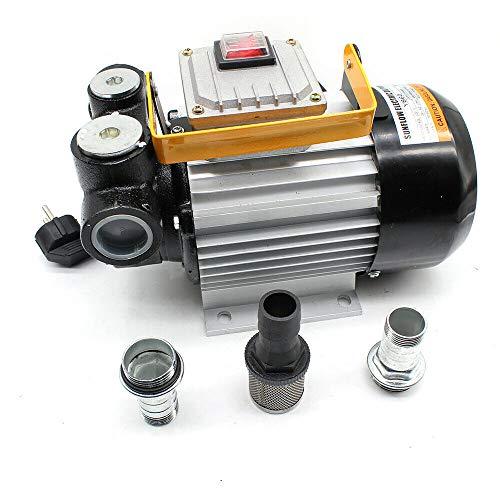 Dieselpumpe HaroldDol Heizölpumpe Selbstansaugend Fasspumpe Kraftstoffpumpe Tankstelle 60L/Min 2800 U/min 550W mit Zubehörset