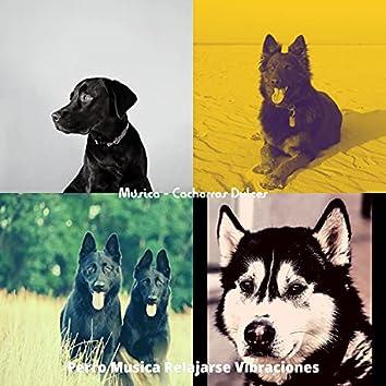 Musica - Cachorros Dulces