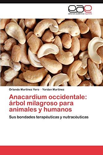 Anacardium occidentale: árbol milagroso para animales y humanos: Sus bondades terapéuticas y nutracéuticas
