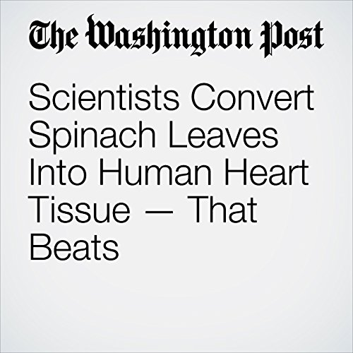 Scientists Convert Spinach Leaves Into Human Heart Tissue — That Beats audiobook cover art