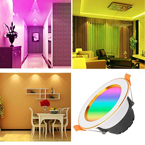 NATRUSS Voice Control Light, Timing Switch Party Ceiling Lamp, Dimmable for 7W RGB+W Home