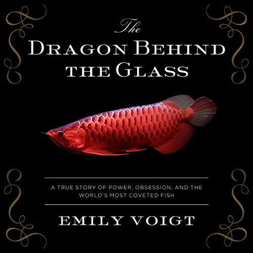 The Dragon Behind the Glass audiobook cover art