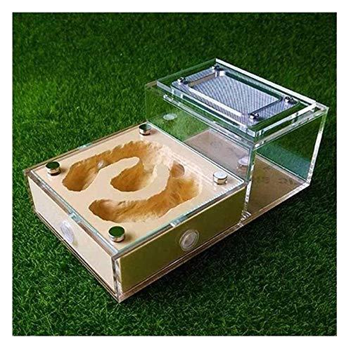 JKFZD Ameise Nest Acryl Ameise Villa Werkstatt Insektenzucht Container Ameisen Bauernhof Pädagogisches Bildung und Natur Wissenschaftskit (Color : Yellow, Size : 15x9.5x6cm)