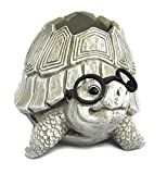 Roman Woodland Critters with Eye Glasses Novelty Planters (Turtle),One Size