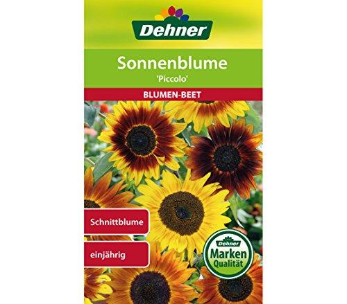 "Dehner Blumen-Saatgut, Sonnenblume \""Piccolo\"", 5er Pack (5 x 3 g)"