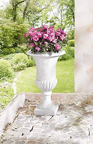 Dekoleidenschaft Pflanzer Amphore in Steinoptik, grau, 62 cm hoch, Blumentopf, Pflanztopf