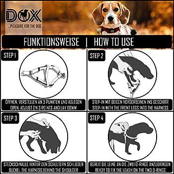 DDOXX Harnais Chien Step-in Nylon, Réglable | Nombreuses Couleurs & Tailles | pour Petit, Moyen Gros & Grand | Harnais de Poitrine Chat Chiot | Bleu, XS