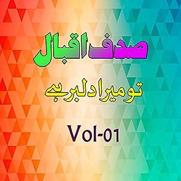 Tu Mera Dilbar Hai, Vol. 1