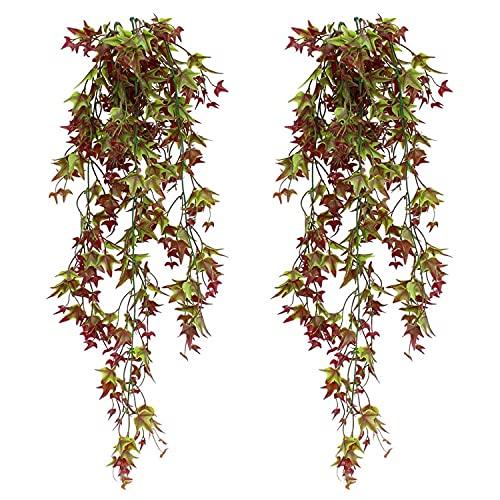 TIANLIN Plantas