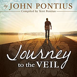 Journey to the Veil cover art