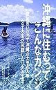 沖縄に住むってこんなカンジ: 突如思い立って沖縄の大学へ入学 女性大生が体験したリアル生活
