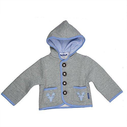 Eisenherz Baby Jungen Kapuzenjacke Sweatjacke mit Geweih, in grau und hellblau - fescher Trachtenlook in Größe 74/80