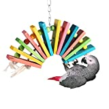 Parrot Toy, Colorful Wooden Bird Toys For Pet Bird Cockatiel Parakeet Cage Chewing Toy