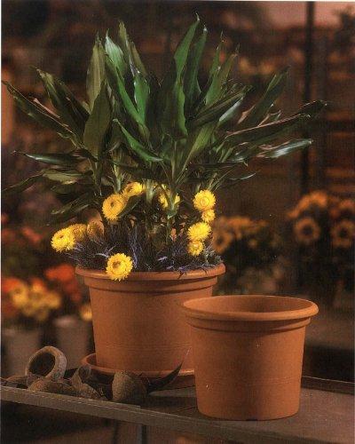 Lhicum Geo Pot à plantes en plastique Rond 18cm x 14cm Terre cuite