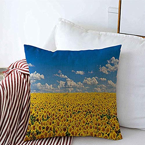 New-WWorld-Shop Kissenbezüge Farben Wolken Feld Gelbe Sonnenblumen Kultivieren gegen Blaue Skyline Himmel Pflanze Sonnenblumen Kissenbezüge
