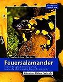 Feuersalamander: Salamandra algira, Salamandra corsica, Salamandra infraimmaculata, Salamandra salamandra (Terrarien-Bibliothek)