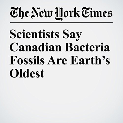 Scientists Say Canadian Bacteria Fossils Are Earth's Oldest copertina
