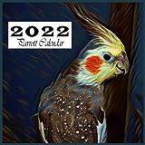 2022 Parrot Calendar: Awesome 15-Month Calendar, October 2021 through December 2022.