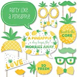 Big Dot of Happiness Tropical Pineapple - Summer Party Photo Booth Props Kit - 20 Count