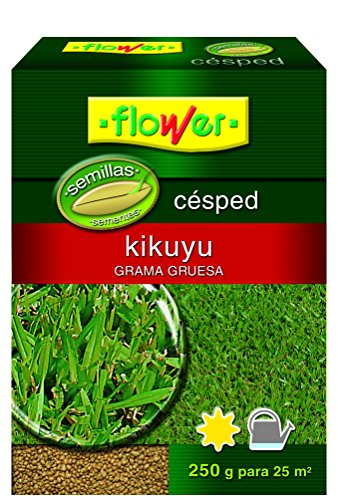 Flower 10793 10793-semilla kikuyo, 250 G, NO Applique, 10.3 x 3.7 x 14.5 cm