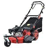 PowerSmart Lawn Mower, 20-inch & 170CC, Gas Powered Lawn Mower, 4-Stroke Engine Self-Propelled Lawn Mower, 3-in-1 Gas...