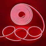 Xunata Tira de luces LED de neón, 5 m, 12 V, 2835, 600 ledes, resistente al agua, flexible, incluye fuente de...