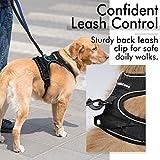 Rabbitgoo No-Pull-Hundegeschirr einstellbar weich Hundegeschirr Haustier einfach sicher Kontrolle Körper bequem Hunde Leine für kleine Hunde schwarz 3 Größe - 6