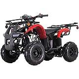 X-PRO 125cc ATV Quad ATV Youth ATV 4 Wheeler 125 ATV Quads,Black