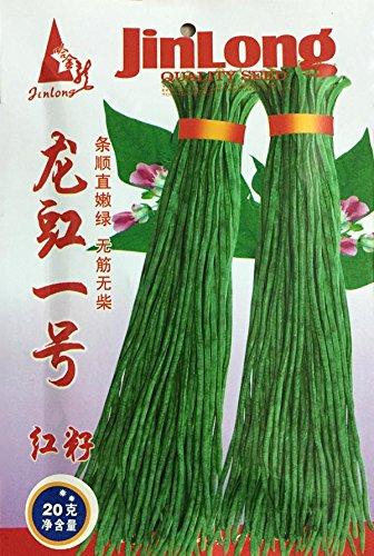 Livraison gratuite 1 graines vertes longues printemps emballage d'origine et d'automne haricots légumes, légumes 15g à rendement élevé haricots verts Graines