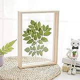 N\A Marco de fotos de madera con diseño de herbario de doble cara de cristal de plexiglás de 21,3 x 26,4 cm