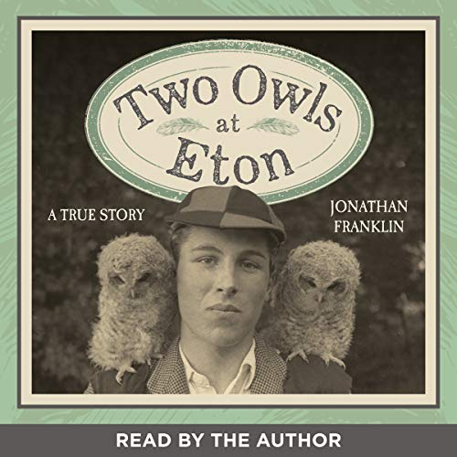 Two Owls at Eton audiobook cover art