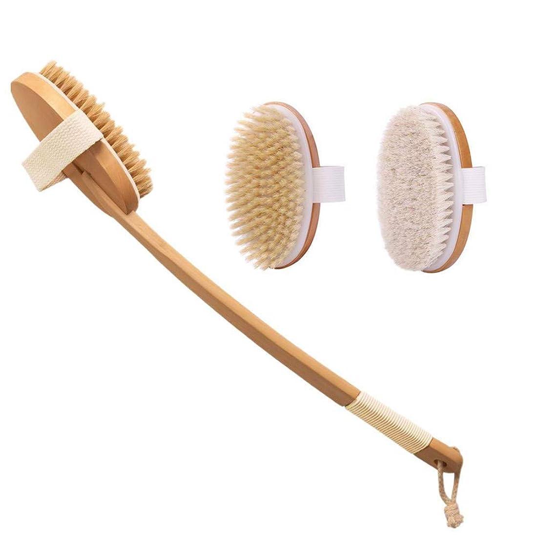 シソーラスリーフレット知る2個セット ボディブラシ ロング マッサージ お風呂用 竹製長柄 天然馬毛