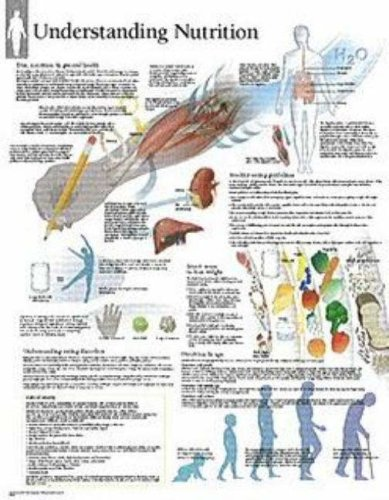 Publishing, S: Understanding Nutrition Laminated Poster