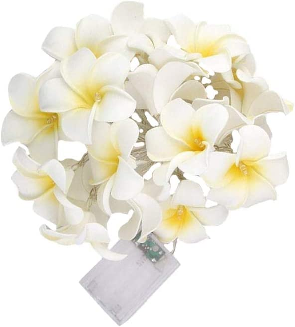 Free shipping anywhere Bombing free shipping in the nation 1pc 1.5M 10 LEDs Artificial Plumeria S Light Fairy Flower String