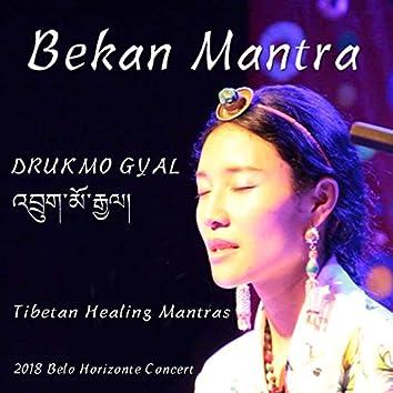 Bekan Mantra (Tibetan Healing Mantras) [Ao Vivo 'Em Belho Horizonte] [feat. Marcus Viana]