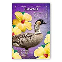 HAWAII BIRD AND FLOWER postcard set of 20 identical postcards. HI state symbols post cards. Made in USA. [並行輸入品]