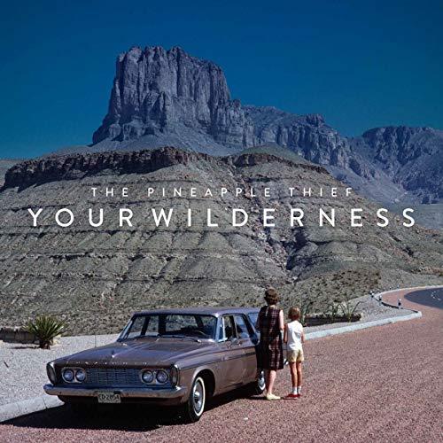 Your Wilderness -Digi-