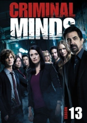 Criminal Minds: The Thirteenth Season