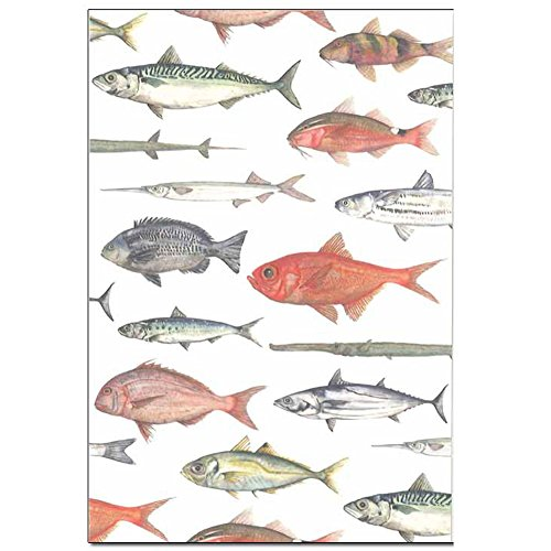 cicada 和紙はがき ばら売り 海シリーズ 魚 ポストカード 金目鯛 タツノオトシゴ 熱帯魚 伊豆 marineD