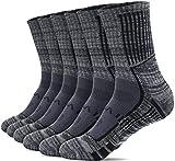 (テスラ)TESLA ソックス 6足組 靴下 フルレングスソックス [抗菌防臭・吸汗速乾] 通勤 通学 ビジネス スポーツ アウトドア 登山 MZS63-CHC_L