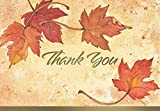 Great Papers! Fall Leaves, Folded, Thank You Note Card, 50 count, 4.875' x 3.375' (2017002)
