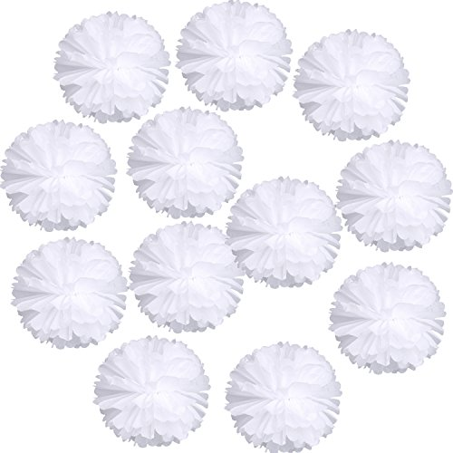 Landisun Wedding Birthday Party Room Decoration Paper Flower Poms(10' Inches (Pack of 12), White)