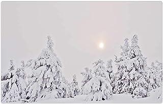 LESGAULEST Doormat Floor Rug/Mat (23.6 x 15.7 inch) - Winter Forest Snow Firs Fog Haze Winter Resin